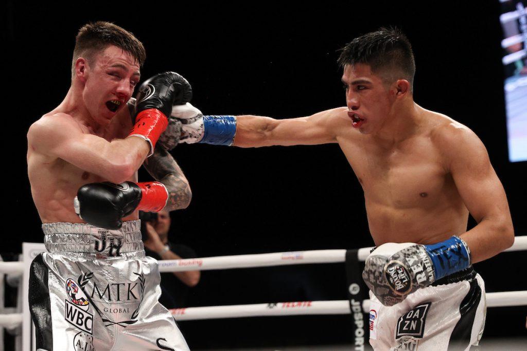 mundo del boxeo
